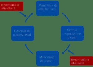 ciclo-del-malessere 1 -