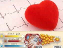 Nutrienti-cuore 1 -