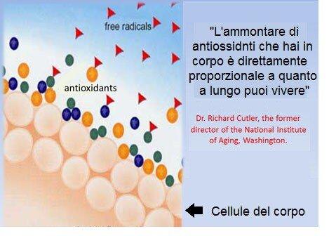 Miglior antiossidante integratore naturale
