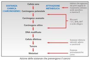 Azione-delle-sostanze-conto-il-cancro 1 -