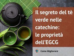 Il segreto del tè verde nelle catechine: le proprietà dell'EGCG