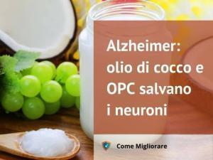 Alzheimer: olio di cocco e OPC salvano i neuroni