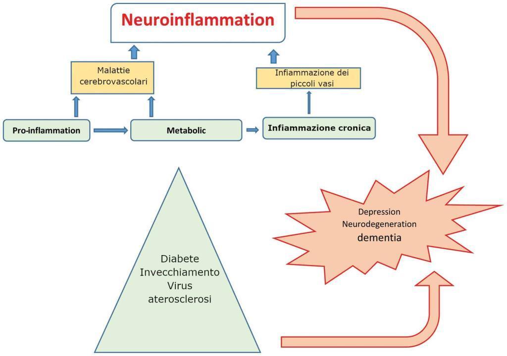 Fonti di infiammazione - Ricerca antinfiammatori naturali